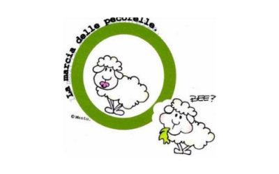 Marcia delle Pecorelle 2019